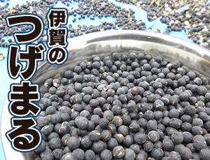 tsugemaru2